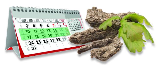 Длительное применение коры дуба может вызвать серьезные проблемы со здоровьем, поэтому курс лечения корой дуба не должен превышать двух недель
