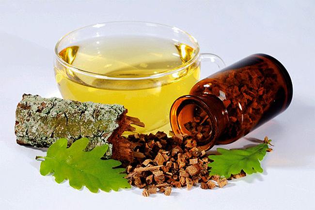 Многие столетия кора дуба используется в народной медицине