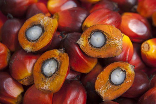 В России пальмовое масло используется достаточно давно в пищевой промышленности