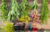 Лечим панкреатит народными средствами – лучшие рецепты