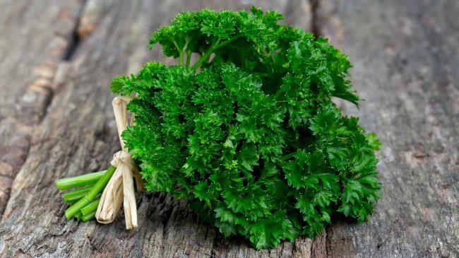 Петрушку ценят за уникальное сочетание витаминов и микроэлементов, высокую биологическую активность компонентов состава