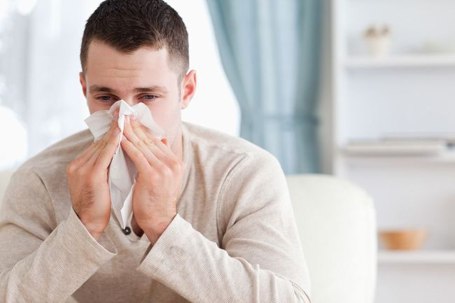 При пониженном иммунитете повышается число палочкоядерных лейкоцитов