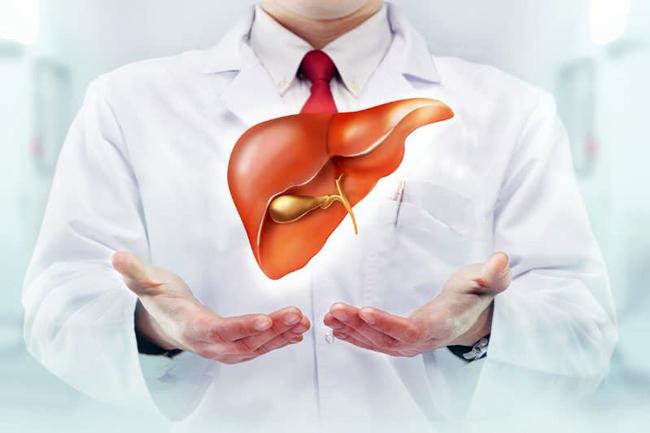 Одна из важнейших функций печени – связывание билирубина крови и его обезвреживание, отклонение от нормы показателей билирубина, говорит о проблемах в функционировании печени или других опасных патологиях