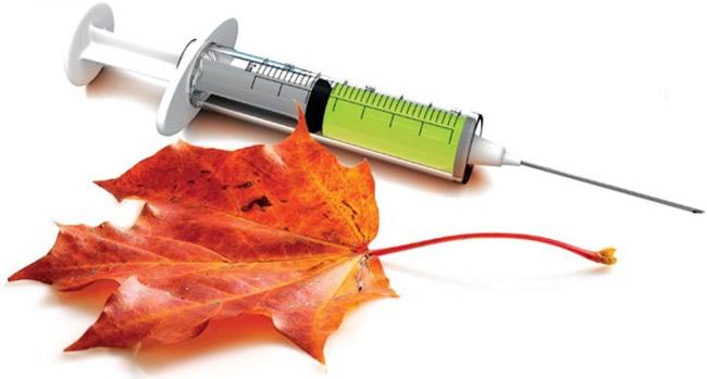 Прививку от гриппа необходимо делать за 10-15 дней до ожидаемого пика эпидемии