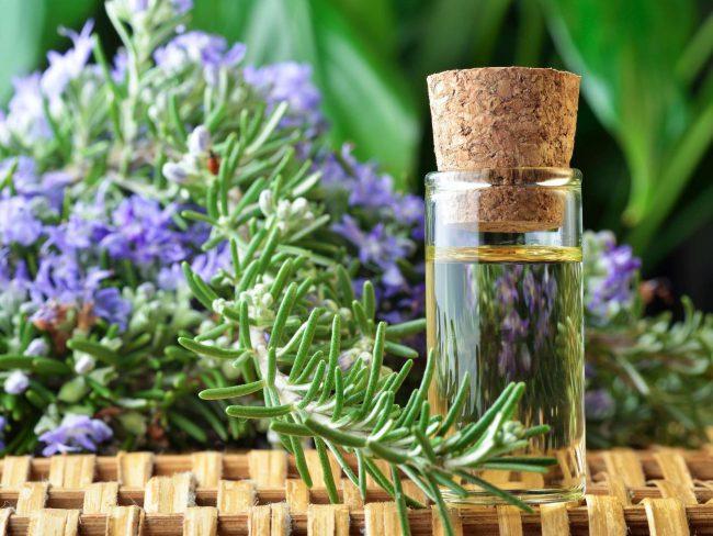 Эфирное масло полезно для укрепления сосудов, великолепно снимает воспаление при геморрое, уменьшает проявления варикозного расширение вен