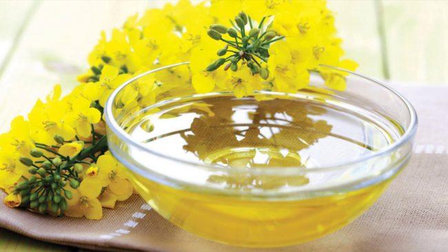 Полезные свойства масла рыжика обусловлены наличием в нем уникального сочетания веществ, предохраняющих клетки от окисления