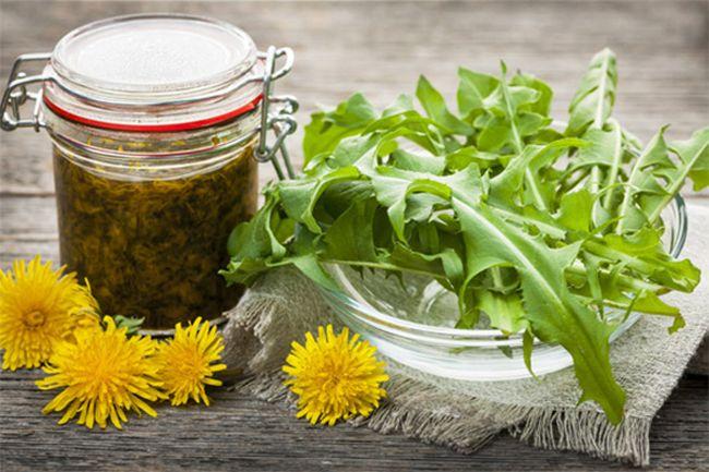 Настой на основе обыкновенного одуванчика помогает наполнить организм витамином D