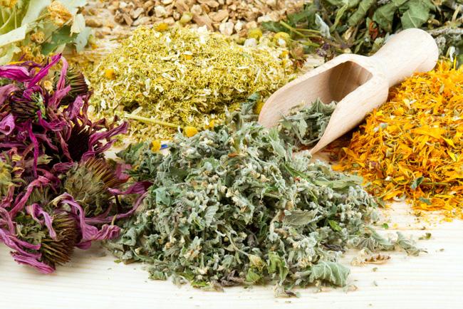 Настои и полоскания из трав - эффективные народные средства в лечении золотистого стафилококка
