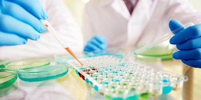 Для выявления золотистого стафилококка, проводят ряд анализов и по результатам определяют степень инфицирования и тяжесть протекания патологии